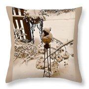 Winterland 2 Throw Pillow