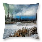 Winters Marsh Throw Pillow
