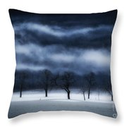 Winter's Passion Throw Pillow