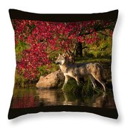 Wolf Portrait In Fall Throw Pillow