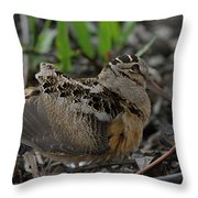 Woodcock In The Woods Throw Pillow