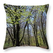 Woodland Walk England Throw Pillow