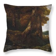Woods Entrance Throw Pillow