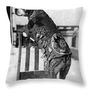 Wwi, Sergeant Stubby, American War Dog Throw Pillow