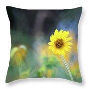 Yellow Arrowleaf Balsamroot  Throw Pillow