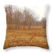 Yellow Autumn  Throw Pillow