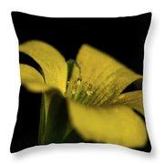 Yellow Clover Throw Pillow