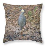 Yellow Crowned Night Heron At Tidal Creek Throw Pillow