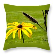 1 Yellow Daisy 2 Yellow Bugs Throw Pillow