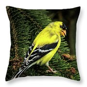 Yellow Finch Throw Pillow