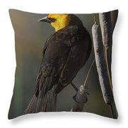 Yellow Headed Blackbird On Cattails Throw Pillow