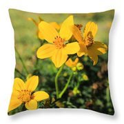 Yellow Wildflowers In A Field Throw Pillow