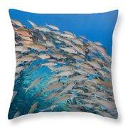 Yellowfin Goatfish Throw Pillow