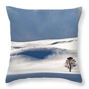 Yellowstone Winter Throw Pillow