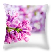Young Spring Lilac Flowers Blooming Throw Pillow