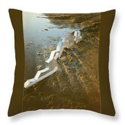 Zinc Sculptures On The Beach At Sunset Throw Pillow