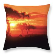 African Sunrise Throw Pillow