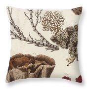 Aquatic Animals - Seafood - Algae - Seaplants - Coral Throw Pillow