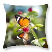 Butterfly Throw Pillow by Richard J Thompson