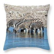 Etosha - Namibia Throw Pillow