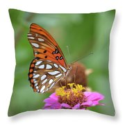 Gulf Fritillary Butterfly  Throw Pillow