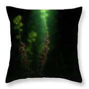 Judas Tree Cercis Siliquastrum Throw Pillow