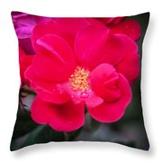 Knockout Roses Painted  Throw Pillow