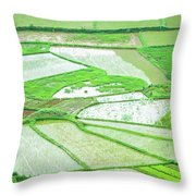 Rice Fields Scenery Throw Pillow