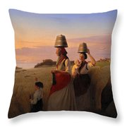 Rural Scene Throw Pillow