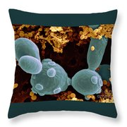 Saccharomyces Cerevisiae Throw Pillow