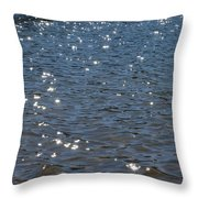 Savannah River  Throw Pillow