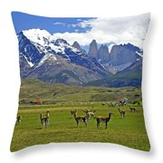 Springtime In Torres Del Paine Throw Pillow