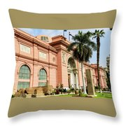Horse 2 - The Egyptian Museum Of Antiquities - Cairo Egypt Throw Pillow