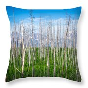 Vast Scenic Montana State Landscapes And Nature Throw Pillow
