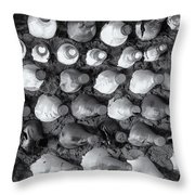 100 Bottles On The Wall Throw Pillow