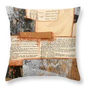 100 Day Challenge # 18 Throw Pillow