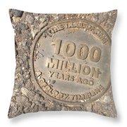1000 Million Years Ago Throw Pillow