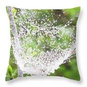 10000-spider Web1 Throw Pillow