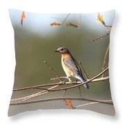 105319 - Bluebird Throw Pillow