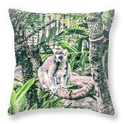 10773 Cotton Topped Tamarin Throw Pillow