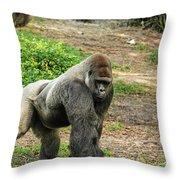 10899 Gorilla Throw Pillow