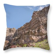 10902 Owyhee River Canyon Throw Pillow