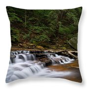 Brandywine Creek Falls Throw Pillow