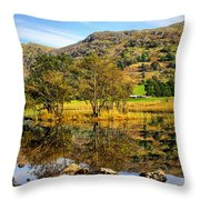 Brothers Water Throw Pillow