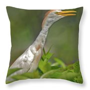 11- Cattle Egret Throw Pillow