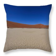 Death Tree Hidden Vlei Throw Pillow