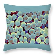 Lactococcus Lactis Throw Pillow