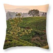 Nuwara Eliya - Sri Lanka Throw Pillow