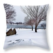 Obear Park In Winter Throw Pillow