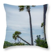 Palmetto Forest On Hunting Island Beach Throw Pillow